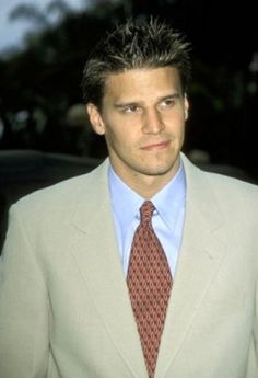 how do meet david boreanaz