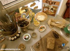 """""""Childhood is filled with natural wonder and curiosity. The learning environment must reflect a space that inspires a sense of wanting to investigate, to find out and to explore."""" - Kathy Walker. For more inspiring classrooms visit: http://pinterest.com/kinderooacademy/provocations-inspiring-classrooms/ ≈ ≈"""