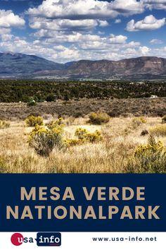 Anders als in anderen Nationalparks in den USA steht im Mesa Verde Nationalpark nicht die Natur, sondern die menschliche Kultur im Mittelpunkt. Der Nationalpark im Südwesten des US-Bundesstaates Colorado ist Teil des Welterbes der UNESCO. Der Nationalpark ist Zeugnis der Kultur der Anasazi, auch Ancestral Pueblo People genannt, die mehr als 700 Jahre lang in der Region lebten. Mehr als 5.000 archäologisch wertvolle Stätten befinden sich im Park. #usainfo #aboutusa #mesaverdenationalpark Nationalparks Usa, Bryce Canyon, Colorado, Mountains, People, Travel, Green Table, Mule Deer, Exploring