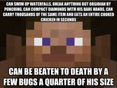 Funny Minecraft Memes - Google Search