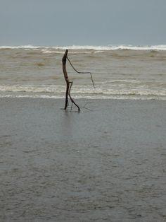 Flood Sticks