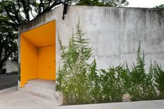 Casa Grecia by Isay Weinfeld  Upon approach, the only visible portion of the home is a short concrete structure. Hidden away is 1,900m² of plants.