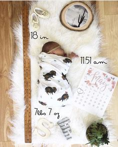 Brand New  @_mrs.farren_ Bison Swaddle Sets now available at spearmintLOVE.com. They will ship Wed. & Thurs. next week!