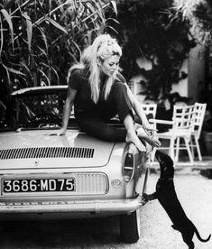 Brigitte BARDOT et un petit chien noir