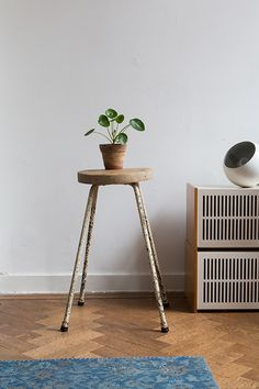 A Chinese moneyplant potted in a small terracotta planter on a vintage backless bar stool in front of white painted walls, medium hardwood and vintage blue area rug. Decor, House Interior, Chinese Money Plant, Home Goods, Home, Furnishings, Interior, Home Furniture, Home Decor