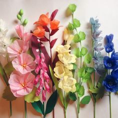 Thank you for all the kind comments about my hollyhock stem yesterday, you all sure know how to make a girl's heart sing! Here's a little rainbow of tall stems that I boxed up today. I finished the second batch of flowers for my book, and it seems surreal that all 100 varieties are finally complete! My studio is so empty, but that just means plenty of space for my next project. ☺️ #moonflora #paperflowers