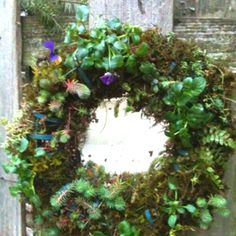 Living Wreath planted with succulents, violas, ferns & moss