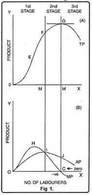 Graphical Presentation of Variable Factor of Production