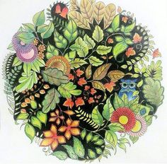 Enchanted Forest. Johanna Basford Books, Johanna Basford Coloring Book, Enchanted Forest Book, Enchanted Forest Coloring Book, Zentangle, Secret Garden Coloring Book, Color Harmony, Crazy Colour, Coloring Book Pages