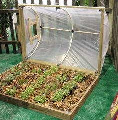 Mini greenhouse with easy open… Vertical wood pallet garden! Mini greenhouse with easy open roof! Pallet Greenhouse, Mini Greenhouse, Greenhouse Plans, Greenhouse Gardening, Greenhouse Wedding, Pallet Gardening, Garden Pallet, Cold Frame Gardening, Homemade Greenhouse