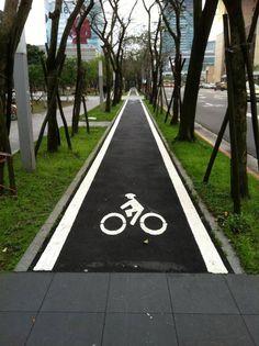 a serious bike lane