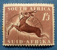 1'3 South Africa - Springbok PM (Port Elizabeth)