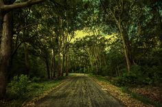 the Road by Carlos Bermúdez on 500px