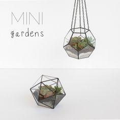 Unique terrariums ❤️handmade