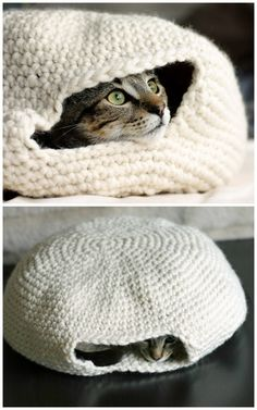 "DIY Crochet Cat Nest ""Muffin Oven"" Pattern by Eilen Tein on Ravelry. Cute photos by The Dapper Toad of the Cat Nest she crocheted using the free pattern from Ravelry here (go to her site for the..."
