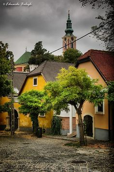 Szentendre from izabella szuromi.--I think this is the little village we stopped in briefly on the way back to Budapest on the bus Wonderful Places, Beautiful Places, Budapest Travel Guide, Heart Of Europe, Budapest Hungary, Countries Of The World, Croatia, Countryside, The Good Place