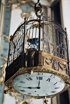 clock bottom bird cage