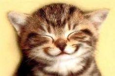 Bom dia! Você já sorriu hoje? Então pode começar que o final de semana está apenas começando ;)