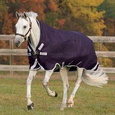 53 Best Rambo Blankets Images Horse