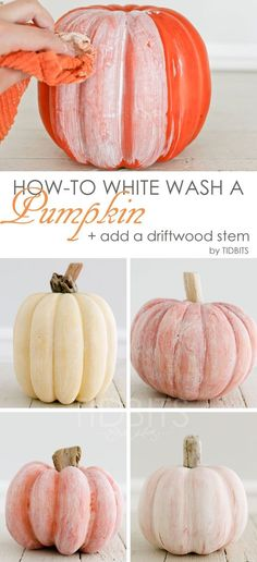 White Wash a Pumpkin + Add a Driftwood Stem - Tidbits How to white wash a pumpkin and add a driftwood stem - for lovely coastal or shabby chic Fall decor.How to white wash a pumpkin and add a driftwood stem - for lovely coastal or shabby chic Fall decor. Fall Home Decor, Autumn Home, Fal Decor, Diy Autumn, Autumn Ideas, Shabby Chic Fall, Shabby Chic Pumpkins, Shabby Chic Halloween Decor, Fall Chic