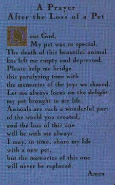 Loss Of A Dog Prayer