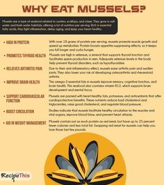 Cooking Tips Podcasts   Why Eat Mussels from RecipeThis.com