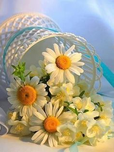 Oops a daisy Little Flowers, My Flower, Flower Power, Beautiful Flowers, White Roses, White Flowers, Sunflowers And Daisies, Daisy Love, Good Morning Flowers