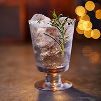 10 Gin and Tonic Cocktails