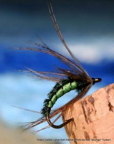 FlyTyingForum.com - Green Caddis Larva (soft hackle)