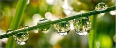 """Résultat de recherche d'images pour """"reflets eau"""""""