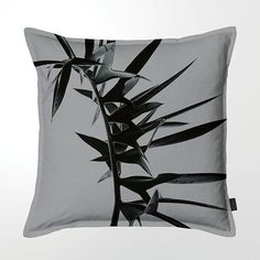 Scatter Cushion (DBL sided print ) - Silver Cycad Claremont House, Scatter Cushions, Throw Pillows, Feather, Brass, Cover, Toss Pillows, Quill, Decorative Pillows