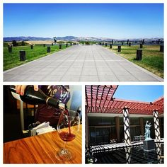 Artesa Vineyards & Winery, Napa, CA (Taken with Instagram) Images by Alan Flores.