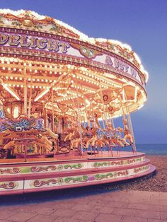 """On the carousel of time we cannot return to the same moment, same feelings or the same circumstances. We can only glance behind to where we came from. So remember to learn from the ups and downs and enjoy the ride"" - Brighton beach Carousel"