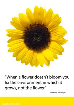 """When a flower doesn't bloom you fix the environment in which it grows, not the flower.""   Alexander den Heijer"