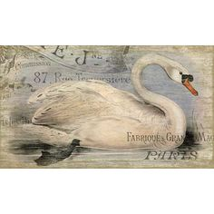 Found it at Joss & Main - French Swan Wall Decor
