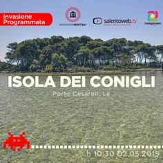 Su instagramersitalia.it l'invasione all'isola dei conigli (Lecce) http://instagramersitalia.it/le-invasioni-digitali-2015-con-instagramers-lecce/