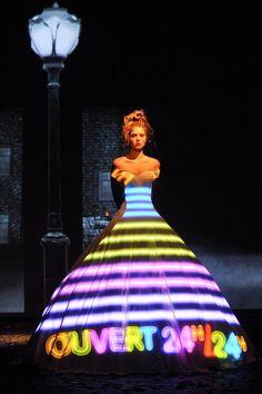 Franck Sorbier   Haute Couture Autumn/Winter 2012/2013 inspiration