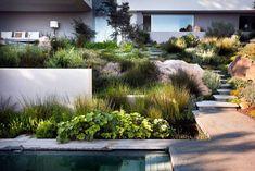 Aussenanlage in South Africa: moderner Garten von Paul Marie Creation