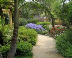 Mediterranean Landscape Design, Pictures, Remodel, Decor and Ideas - page 10