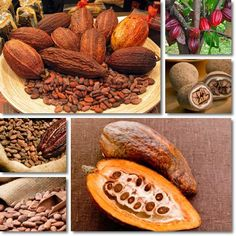 Properties and Benefits of Cocoa Beans – NatureWord Chocolate Shop, How To Make Chocolate, Bean Varieties, Cacao Beans, Theobroma Cacao, Appetizer Salads, Cocoa Butter, Food Photo, Gastronomia