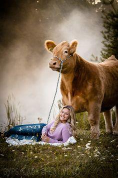 Farm Senior Pictures, Summer Senior Pictures, Cow Pictures, Photography Senior Pictures, Senior Photos Girls, Cute Photography, Senior Girls, Animal Photography, Show Cows