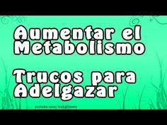 COMO ACELERAR EL METABOLISMO, Adelgazar Comiendo, Trucos para acelerar, consejos Alimentacion - http://dietasparabajardepesos.com/blog/como-acelerar-el-metabolismo-adelgazar-comiendo-trucos-para-acelerar-consejos-alimentacion/