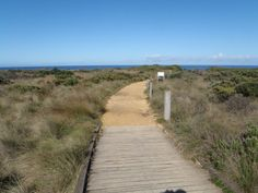 TIMBER PATH - Google Search