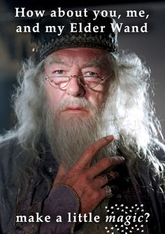 Michael Gambon plays the sagelike Dumbledore in the Harry Potter series. Harry Potter Film, Harry Potter Love, Harry Potter Characters, Harry Potter World, Harry Potter Professors, Albus Dumbledore, Ghostbusters, Hogwarts, Fans D'harry Potter