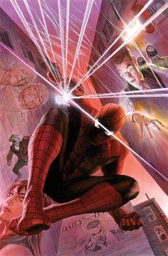 Homem Aranha: Teia de Lembranças de Alex Ross.
