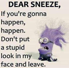 Funny Minions jokes quotes AM, Thursday September 2015 PDT) - 10 pics - Minion Quotes Minion Photos, Funny Minion Pictures, Funny Minion Memes, Minions Quotes, Minions Images, Funny Photos, Funny Math Jokes, Fun Meme, Minion Humor