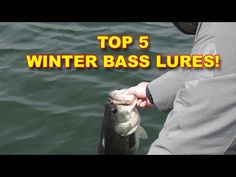 Lures For Bass, Bass Fishing Lures, Fishing Bait, Fishing Techniques, Fishing Quotes, Big Fish, Camping, Winter, Youtube