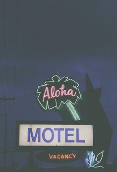 palm tree sign Aloha