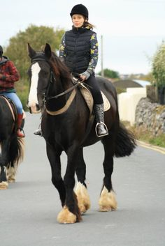 The best horse in Ireland. Midnight is a bit of a legend in local hunting circles. Rides in a simple snaffle bit, great ground manners, good for farrier, dentist and vet. Easy to catch, load and groom and tack up. Great with children.  FB page: https://www.facebook.com/CoopersHillLivery  Links to full album  Midnight https://www.facebook.com/media/set/?set=a.547350621978779.1073741850.304410449606132&type=3