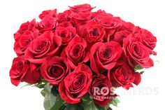 Always in popular demand, Wholesale Red Roses are the ultimate symbol of love and the official flower of Valentine's Day. This highly sought after rose is perfect in weddings and special events as wel